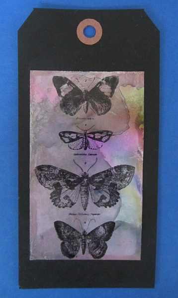 cc102-day4-mono-butterflies